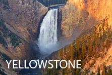 Galería Yellowstone