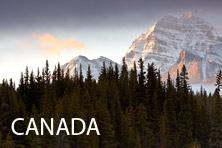 Galería Canada